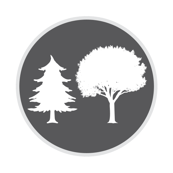 Leśnictwo
