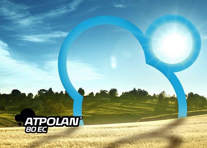 Atpolan 80 EC - baner 700x500