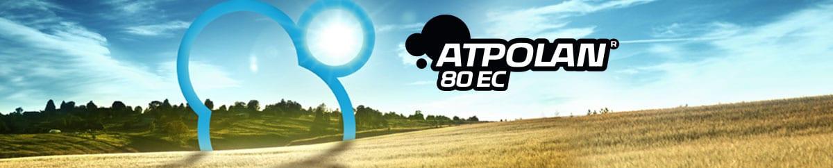 Atpolan 80 EC - baner 1200x240